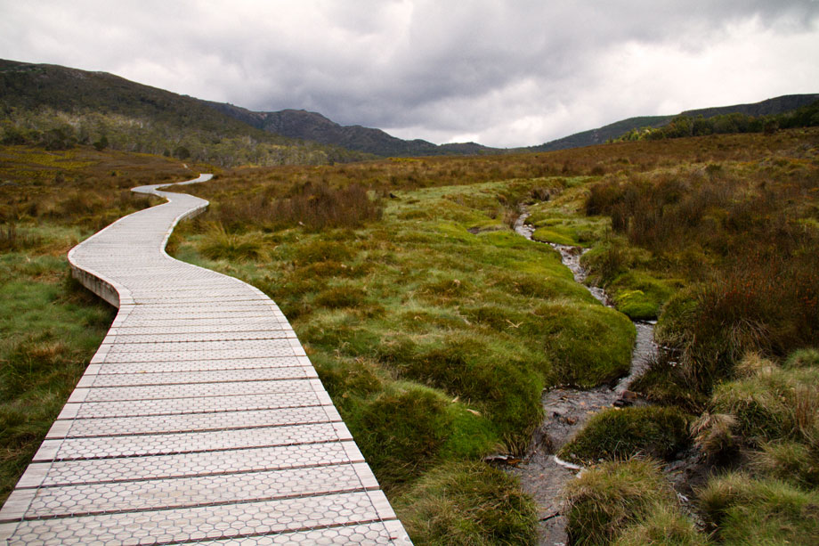 Cradle Mountain walking track.