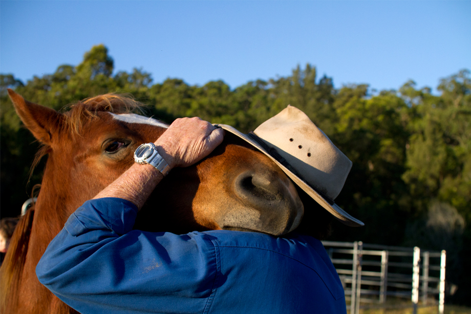 Cuddles with the Cowboy